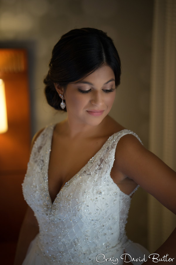 Bride Portrait Detroit MI Laurel Manor
