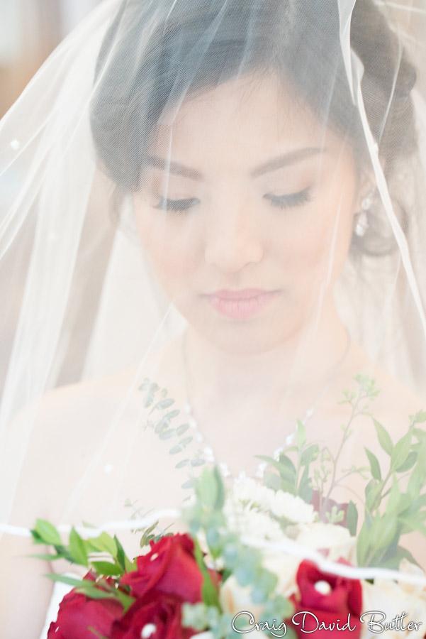 bride portrait veil shot