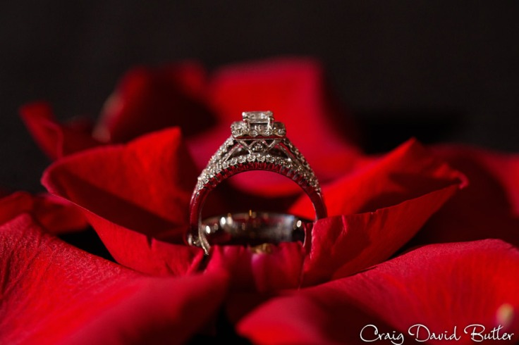 Detail photo of the wedding rings at the Diamond Center in Novi MI