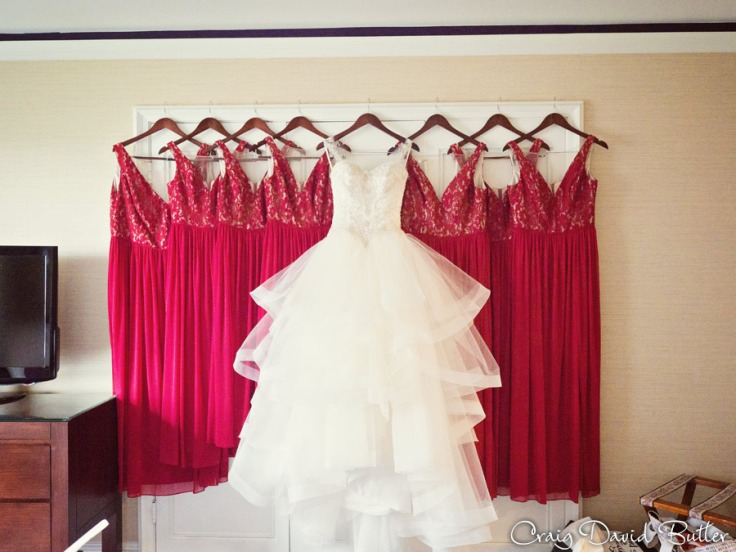 The wedding gown photo of Bride and Bridesmaids Dresses at the Henry Hotel in Dearborn