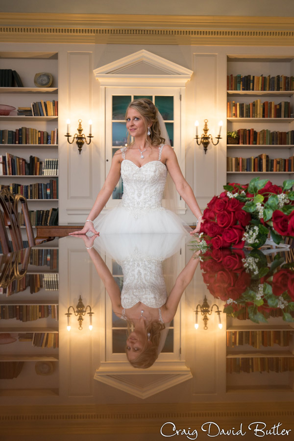 Bride Portrait in the Library at Lovett Hall in Dearborn