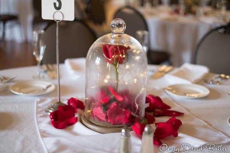 Lovett-Hall-Wedding-Photos-CraigDavidButler-1615