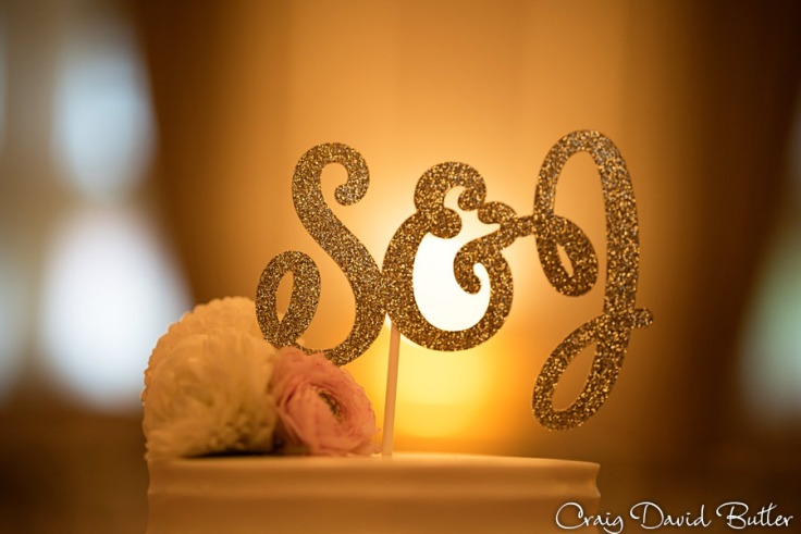 cake topper at the wedding reception in the Grand Ballroom at the Inn at St. John's in Plymouth MI by Craig David Butler