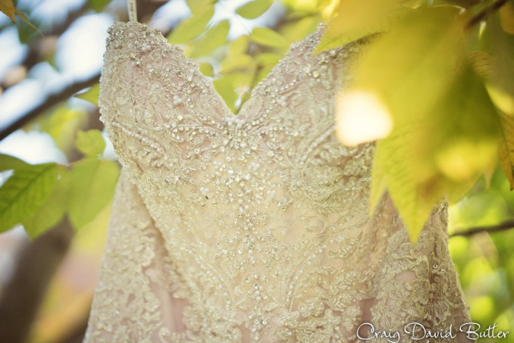 Detail of Brides gown on a fall day in Livonia MI by Craig David Butler