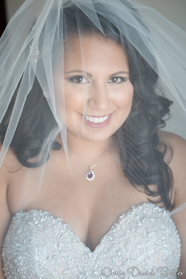 Veil photo of the bride at the Marriott in Livonia MI
