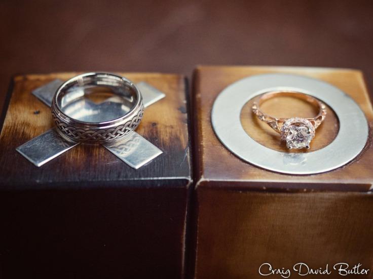 Baronette_Wedding_Photos_Novi_MI_CDBStudios1006