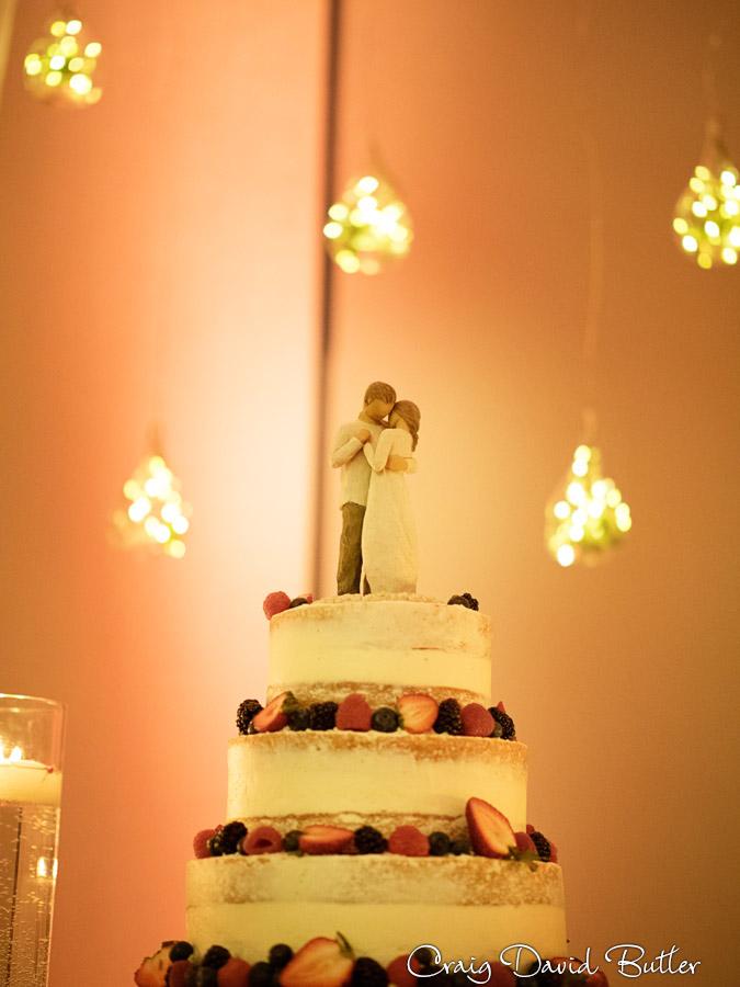 Baronette_Wedding_Photos_Novi_MI_CDBStudios1020