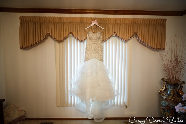AnnArbor_Wedding_Livonia_Ceremony_CDBStudios1088