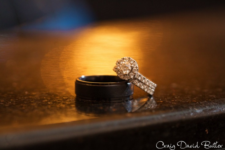 AnnArbor_Wedding_Livonia_Ceremony_CDBStudios1090