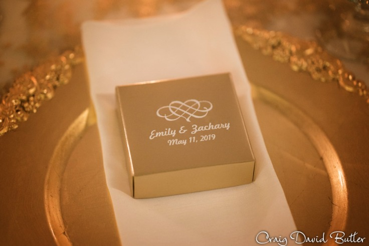 Michigan_Wedding_Photographer_CDBStudios1032