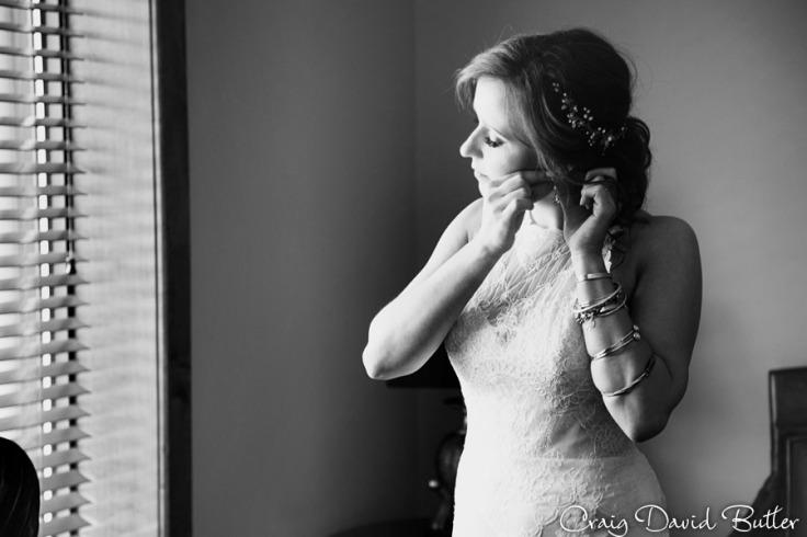 Ann_Arbor_Wedding_photos-CDBStudios-4035