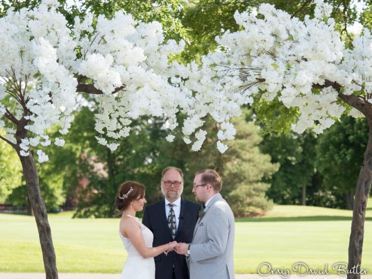 Ann_Arbor_Wedding_photos-CDBStudios-4065