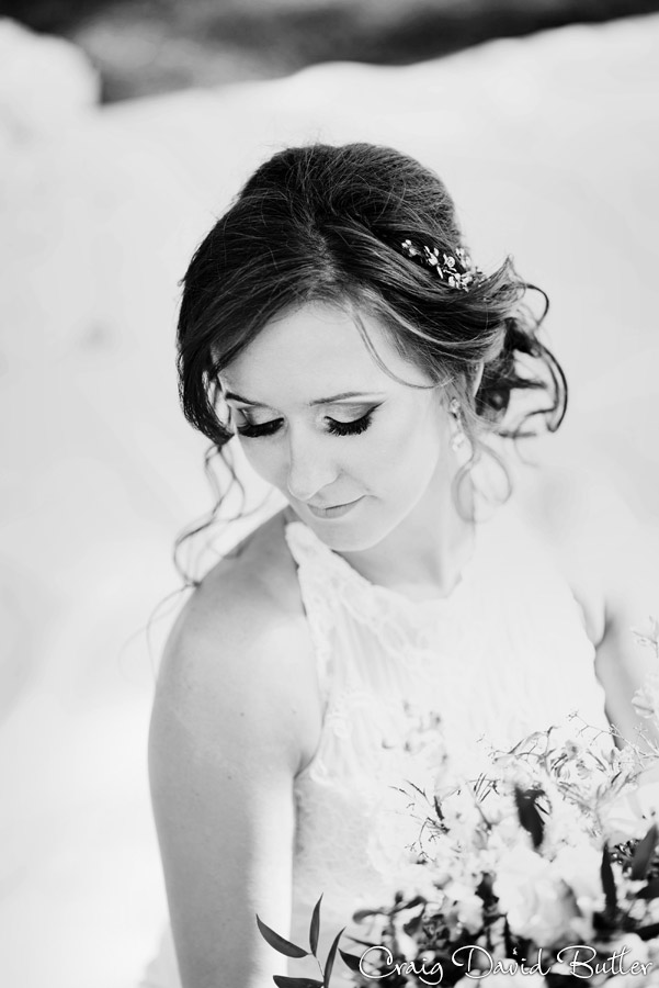 Ann_Arbor_Wedding_photos-CDBStudios-4076