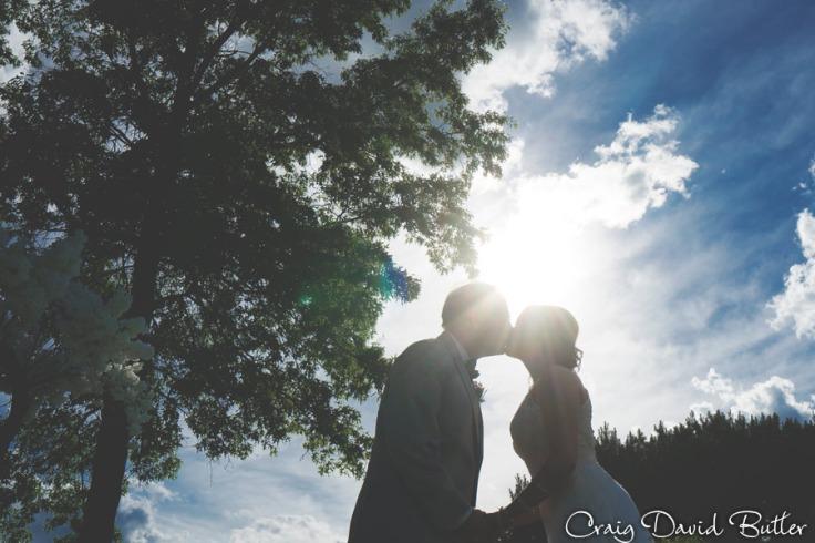 Ann_Arbor_Wedding_photos-CDBStudios-4093