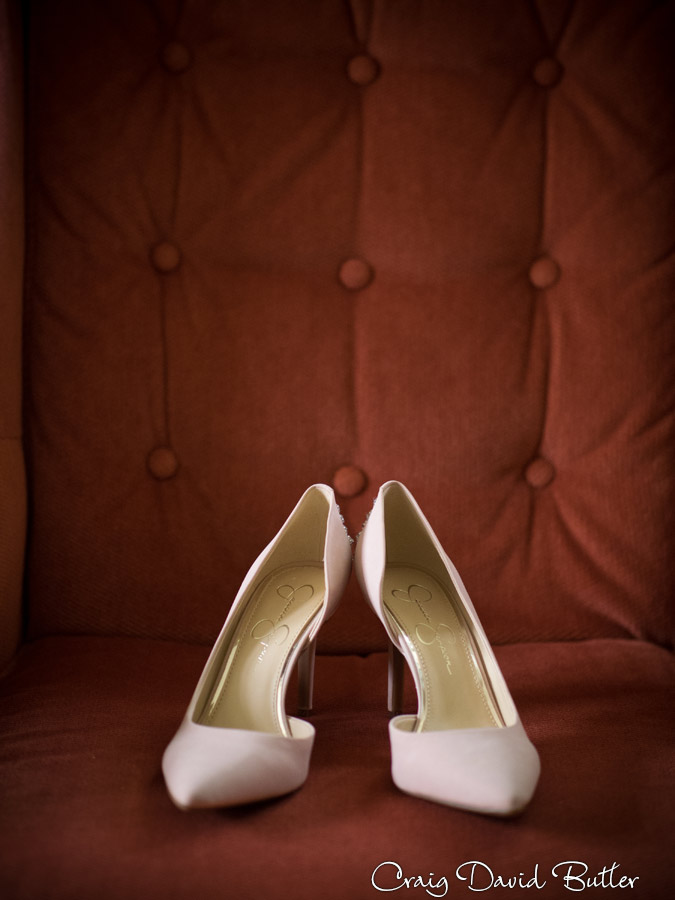 AnnArbor-CityClub-WeddingPhotos-CDBStudios1112
