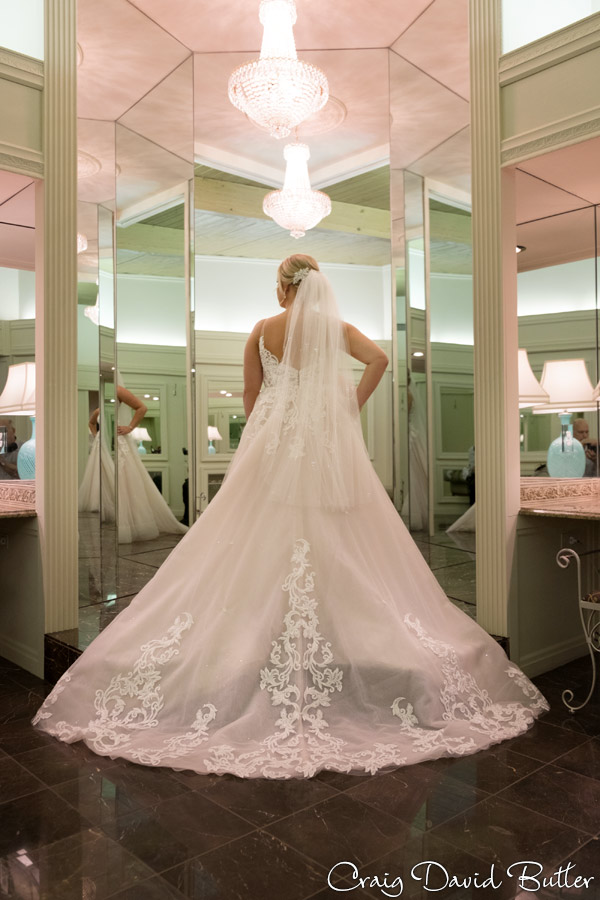 Bay_Pointe_MI_Wedding_photos_CDBStudios-4014