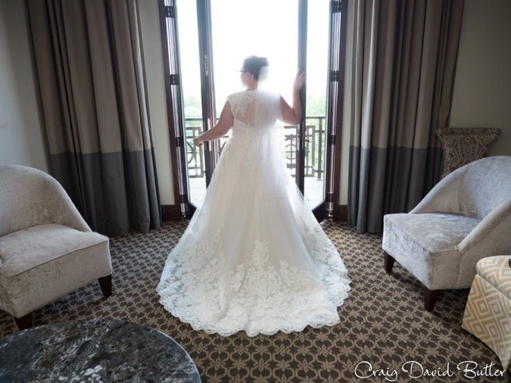 StJohns-PlymouthMI-Wedding-photos-Video-CDBStudios1082