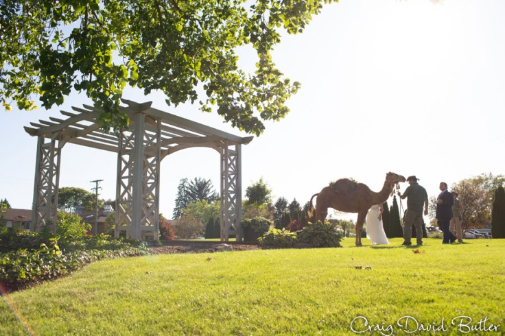 FoxHill_WeddingPhotos_CDBStudios1010