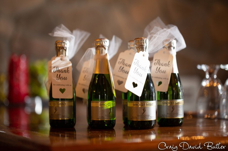 FoxHills_PlymouthMI_WeddingPhotos-CDBStudios-2037