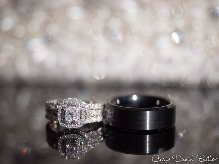 Laurel_Manor_Livonia_Plymouth_Wedding_CDBStudios-1005