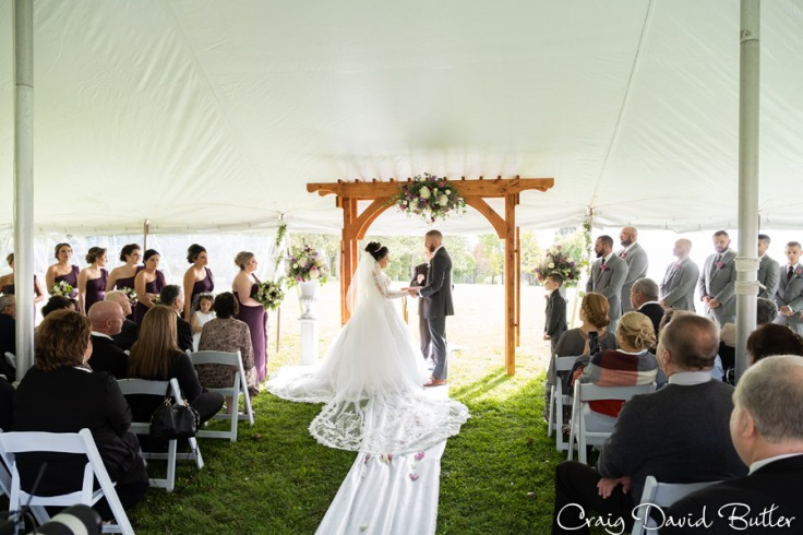 Laurel_Manor_Livonia_Plymouth_Wedding_CDBStudios-1024