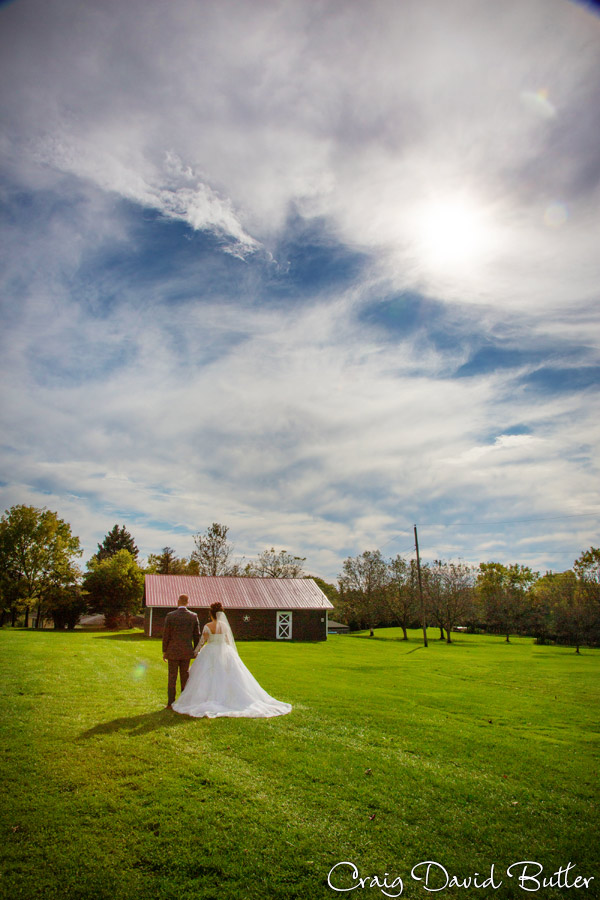 Laurel_Manor_Livonia_Plymouth_Wedding_CDBStudios-1027