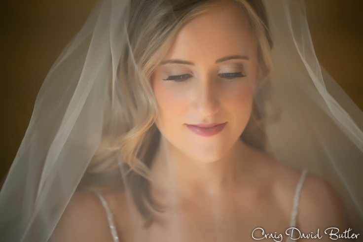 StJohnsPlymouthMI_WeddingPhotos_-3023