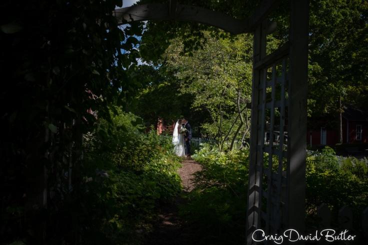 Plymouth_MI_Wedding_photos--1051