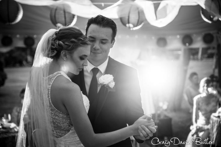 Plymouth_MI_Wedding_photos--1059